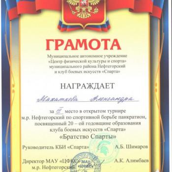 3 место в открытом турнире м.р.Нефтегорский по спортивной борьбе панкратион